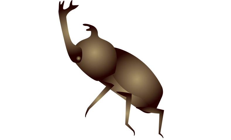 カブトムシ