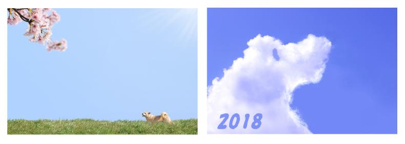 2018年年賀状